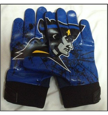 CUSTOM PALM  LOGO FOOTBALL GLOVES - PPG/GLFB